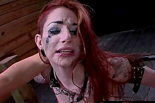 Sheena Rose gets humiliated as she gets cumshots